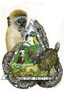 Animal Camp - Cub Creek Science Camp