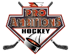 Pro Ambitions Hockey, inc