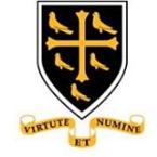 Westminster School Postgraduate Year